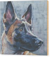 Belgian Malinois In Winter Wood Print