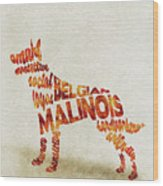 Belgian Malinois Watercolor Painting / Typographic Art Wood Print