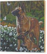 Belgian Malinois With Pup Wood Print