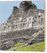 Belize Mayan Ruins  Wood Print