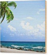 Belize Private Island Beach Wood Print