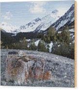 Bell Mountain Wood Print