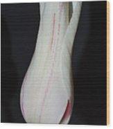 Bell Tulip Wood Print