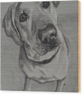 Bella Bean Labrador Retriever Wood Print