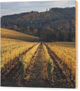 Bella Vida Vineyard 1 Wood Print