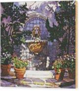 Bellagio Fountain Wood Print by David Lloyd Glover
