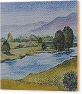 Bellinger Valley In Spring Wood Print