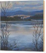 Bellingham In Winter Wood Print