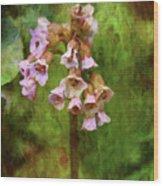 Bells 9186 Idp_2 Wood Print