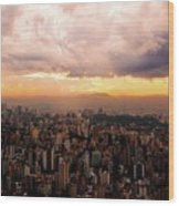 Belo Horizonte - The Cityscape From Above Wood Print