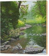Below Drift Creek Falls Wood Print