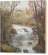 Below the falls Wood Print