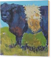 Belted Galloway Cow - The Blue Beltie Wood Print
