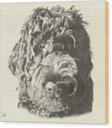 Belvedere Wood Print