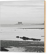 Bembridge Lifeboat Station From St Helens Wood Print