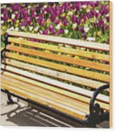 Bench In The Tulips Wood Print