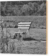 Bench Park Black White  Wood Print