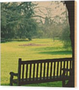 Bench Under A Tree Wood Print