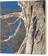Bending Wood Print