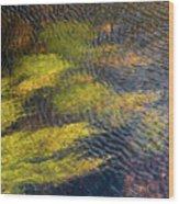 Beneath The Water Wood Print