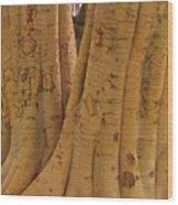 Benevolent Blond II Wood Print