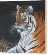 Bengal Boy  Sold Wood Print