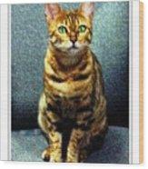 Bengal Cat Digital Oil Pastel Wood Print