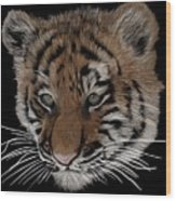 Bengal Tiger Cub Wood Print
