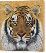 Bengali II Wood Print