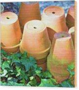 Ben's Pots Wood Print