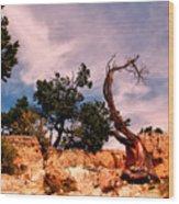 Bent The Grand Canyon Wood Print