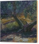 Bent Tree Wood Print