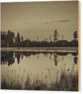 Bentley Pond Pines In Sepia Wood Print