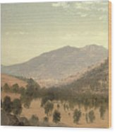 Bergen Park Wood Print