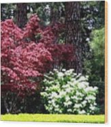 Beringer Winery Gardens Wood Print