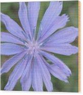 Bermuda Beauty Wood Print