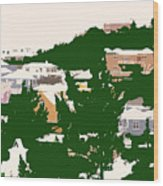 Bermuda Neighborhood Wood Print