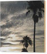 Bermuda Palms Wood Print