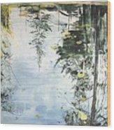 Bern Pool Wood Print