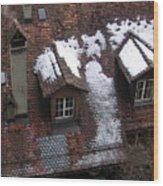 Berne Rooftops II Wood Print