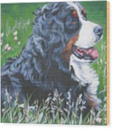 Bernese Mountain Dog In Wildflowers Wood Print