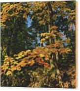 Bernharts Dam 15-126 Wood Print