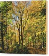 Bernharts Dam 15-221 Wood Print
