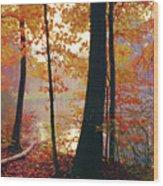 Bernharts Dam Fall 031 Wood Print