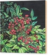 Berries - Pyracantha Wood Print