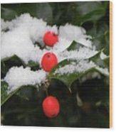 Berries In Snow Wood Print