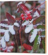 Berries And Snow Wood Print