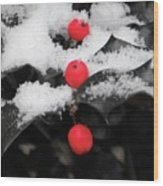 Berries In Snow Wood Print