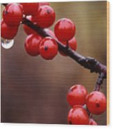 Berries With Water Droplets Wood Print