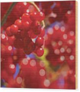 Berry Berry Red-2 Wood Print